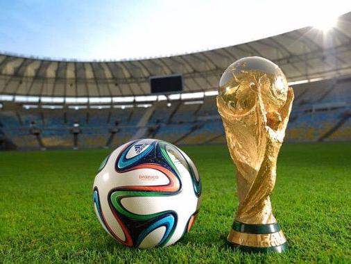 从世界杯看智能密集架